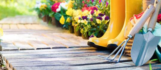 Bricolage maison et jardin